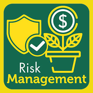 Casino and Sportsbook Risk Management